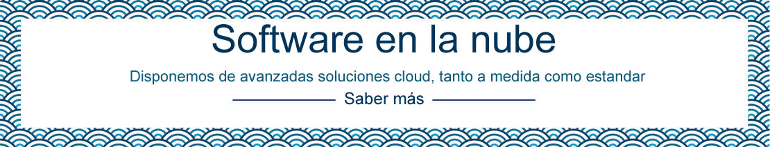 Software en la nube